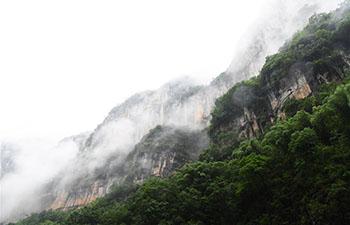 Scenery of gorge in Wushan, China's Chongqing