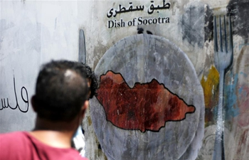 Graffiti campaign launched in Sanaa, Yemen