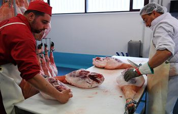 Iberian ham made in Spain