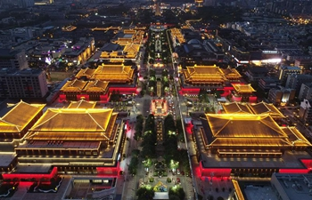 Night tour becomes new impetus to boost tourism of Xi'an, NW China