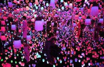 Mori Building Digital Art Museum opens in Tokyo