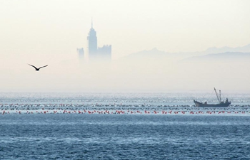 View of advection fog above sea in Yantai, E China