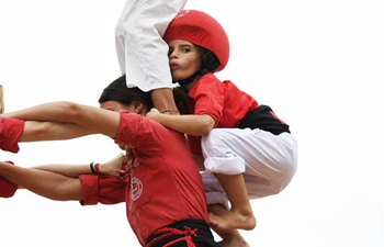 Performers form human towers during Smithsonian Folklife Festival