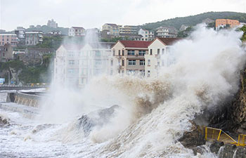 Typhoon Maria makes landfall in east China's Fujian