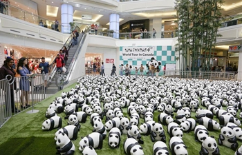 """1,600 Pandas"" begins Canada exhibition tour in Vancouver"