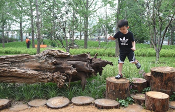 Urban forest park open to public in Beijing