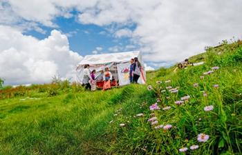 """People enjoy """"lingka"""" in outskirts of Lhasa, SW China's Tibet"""