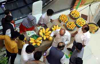 Mango festival kicks off in Islamabad, Pakistan