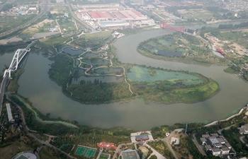 In pics: Sanwan wetland park in Yangzhou, east China