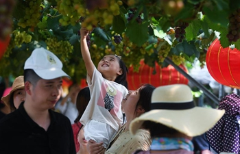 Village tourism popular in east China's Zhejiang