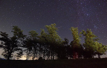 Perseid Meteor Shower in starry sky