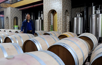 Wine industry in good momentum in northwest China's Ningxia