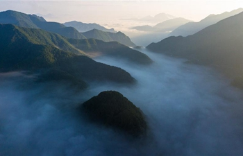 Scenery of Dajiuhu in Shennongjia, C China