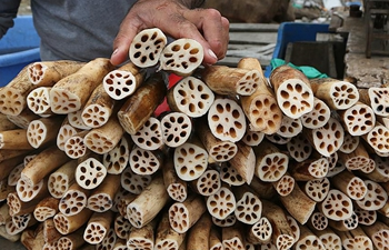 Kashmiri vendor sells lotus stems in summer capital of Indian-controlled Kashmir