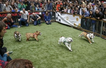 "In pics: ""Pet-A-Palooza"" event held in Vancouver, Canada"