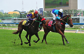 Horse racing game held at Nang Loeng race course in Bangkok
