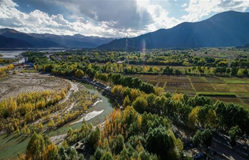 Autumn scenery along Yarlung Zangbo River in SW China's Tibet