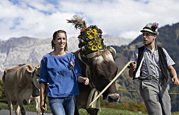 Local herdsmen celebrate Desalpe festival in Switzerland
