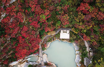 Autumn scenery of Xixiasong scenic area in China's Gansu