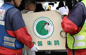 Crested ibises gifted by China arrive in Japan as symbol of friendship
