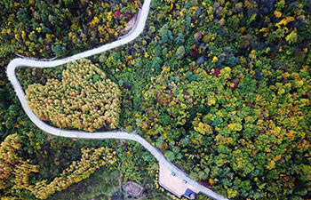 Autumn scenery of Yunping Three Gorges natural scenic area in NW China