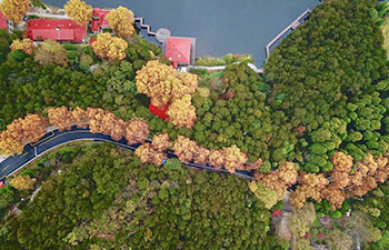 Autumn scenery of Lushan Mountain scenic resort in China's Jiangxi