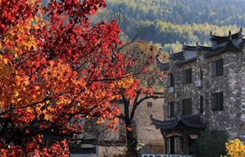Autumn scenery across China