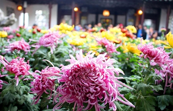 2018 chrysanthemum exhibition opens in Suzhou, E China's Jiangsu