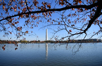 Autumn scenery on lakeside of Tidal Basin in Washington D.C