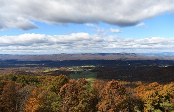 Autumn secenry of Shenandoah National Park in Virginia, U.S.