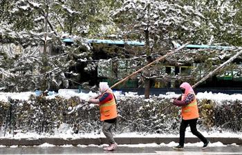 Snowfall blankets Xining, NW China's Qinghai