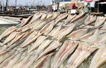 Farmers dry fish in east China's Jiangsu