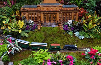 Holiday Train Show held in New York