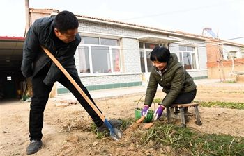 Pic story: disabled couple live self-reliant life in China's Inner Mongolia