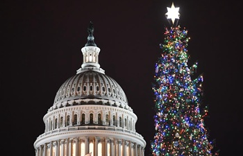 People attend Capitol Christmas Lighting Ceremony in Washington