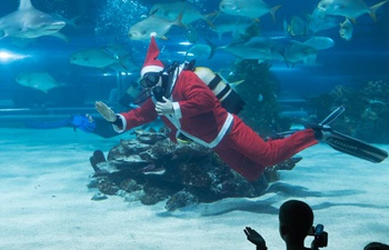 Diving Santa appears at Tropicarium in Budapest, Hungary