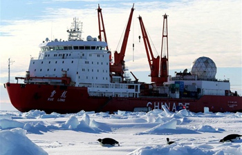 Penguins seen near China's research icebreaker Xuelong in Antarctica