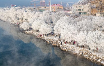 Rime scenery at bank of Songhuajiang River in Jilin