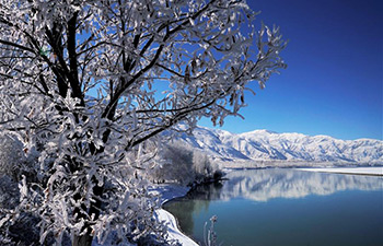 Amazing rime scenery in China's Tibet
