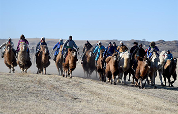 Highlights of Nadam Fair in north China's Inner Mongolia