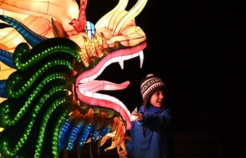 China Light Festival held at Cologne Zoo in Germany