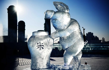 33rd Harbin international ice sculpture contest concludes