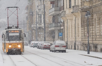 Heavy snowfalls disrupt air, road traffic in Hungary