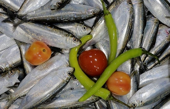 Freshwater sardines now on endangered species list