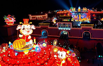Highlights of lantern fair in China's Henan