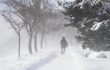 Winter storm hits Toronto, Canada