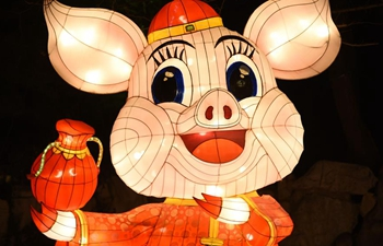 40th Baotu Spring Lantern Show to open to public on Feb. 5 in Shandong