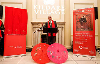 Chinese New Year celebrated in Dublin, Ireland