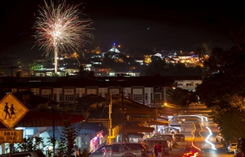 Malaysia's Paloh greets Chinese Lunar New Year