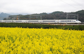 High speed train moves past cole flower fields in Guizhou